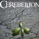 Cerebellion